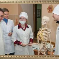 Изучаем скелет