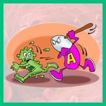 как действуют антибиотики