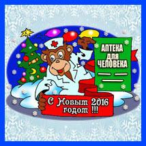 Новогоднее поздравление читателей блога