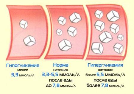 нормы сахара в крови