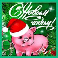 Чтоб не был  свинским год Свинячий! :-)